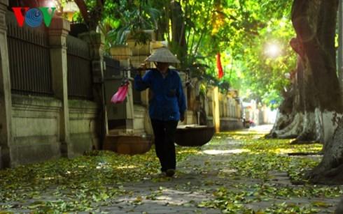 Nhớ mùa thu Hà Nội (Trịnh Công Sơn) | Dòng Nhạc Xưa